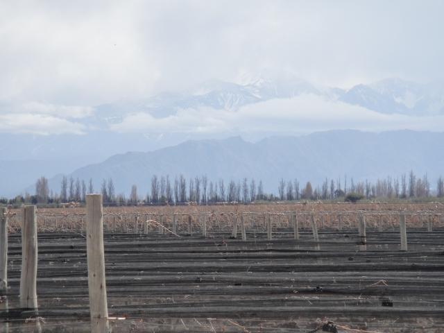 Valle de Uco